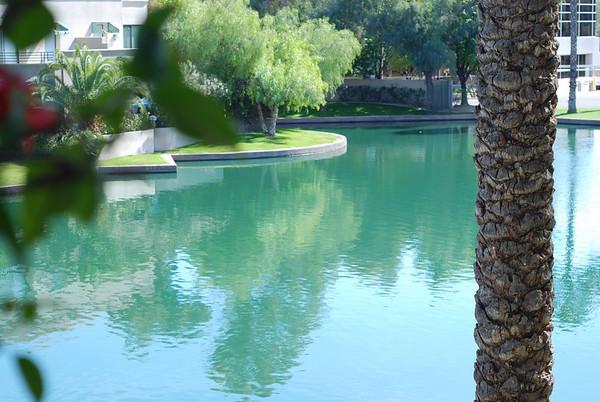 Phoenix 2009